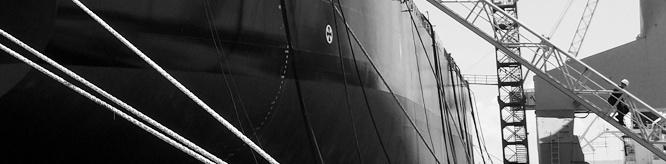fleet-ships.jpg